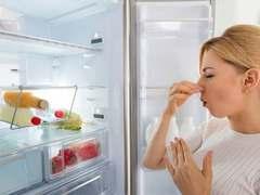 实用主义者的最佳选择  545L云米互联网冰箱即将京东开售