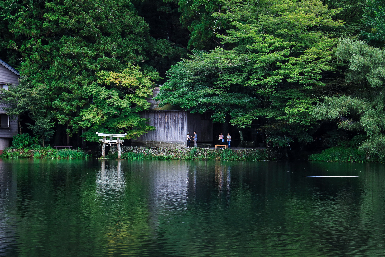 撼动光影极限 佳能EOS R专微相机日本样片实拍(1)