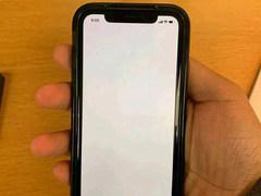 iPhone XR戴上黑色手机壳之后 画面感人