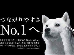 日本大面积网瘫  三大网络运营商之一softbank突发通信障碍