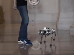 首个会做后空翻的四足机器人:还很抗踢!