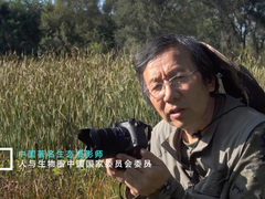 周海翔谈索尼黑卡RX10M4生态摄影