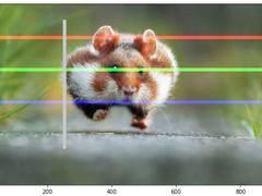 教程:使用Python进行基本图像数据分析!