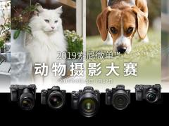 """真正逆天""""黑科技"""" 实测索尼A7M3实时动物眼部对焦"""