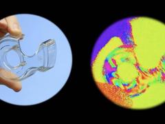 虾眼里的世界是什么样的?哈佛大学研制的微型偏振相机能看见