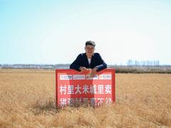 """1101超级拼购日 庆安""""拼购村""""单日成交216万"""