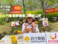 苏宁拼购:直播直卖破局蜂蜜物流痛点