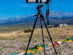 索尼Alpha 7R IV配合SEL200600G拍摄野生动物是否可行?