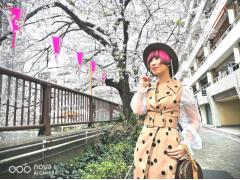 阳春三月,又追着樱花来到目黑川河畔 东京旅行